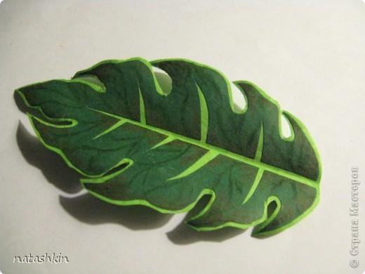 Мастер-класс Квиллинг: МК по созданию двухцветных листочков Бумага. Фото 1