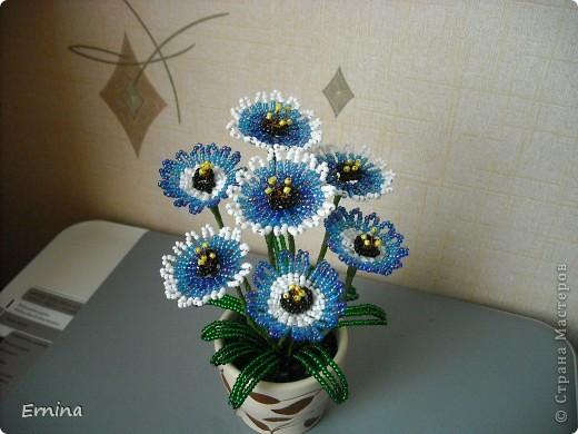 Поделка, изделие Бисероплетение: Цветы из бисера Бисер
