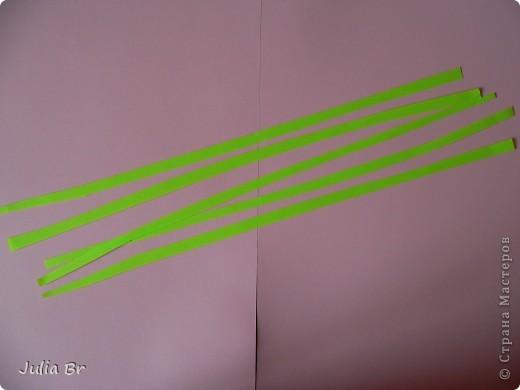 Мастер-класс Квиллинг: Цветы из бумаги Бумага. Фото 4