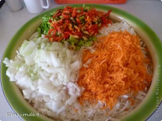 Кулинария, Мастер-класс Рецепт кулинарный: Капуста-скороспелка Продукты пищевые. Фото 4