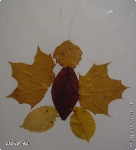Как сделать бабочку своими руками из листьев - Азбука идей