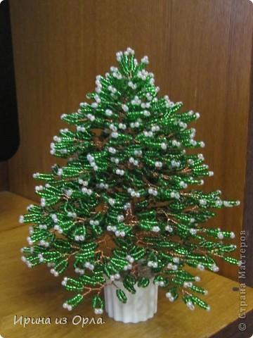 Новогодние композиции из елок своими руками