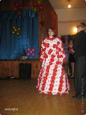 Гардероб: Конкурсное платье на осенний бал Отдых.  Фото 1.