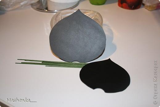 Мастер-класс Лепка: МК по тычинкам для калл, антуриумов Фарфор холодный. Фото 1