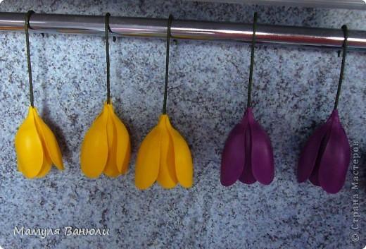 Мастер-класс, Поделка, изделие Лепка: Крокусы + бюджетный МК для новичков Фарфор холодный. Фото 14