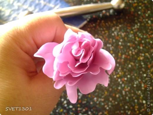 Слепила махровые пионы и по ходу работы сфотографировала процесс лепки цветка . . Фото 7