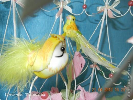 Свит-дизайн Бумагопластика: птички в клетке Бумага гофрированная. Фото 3