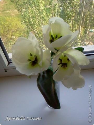 Мастер-класс Лепка: Тюльпаны-Ура,получилось!!! Фарфор холодный. Фото 1