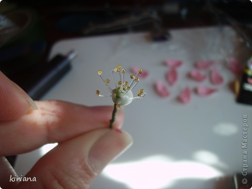 Мастер-класс, Флористика Лепка: Мастер-класс Сакура часть 1 (тычинки) Фарфор холодный. Фото 9