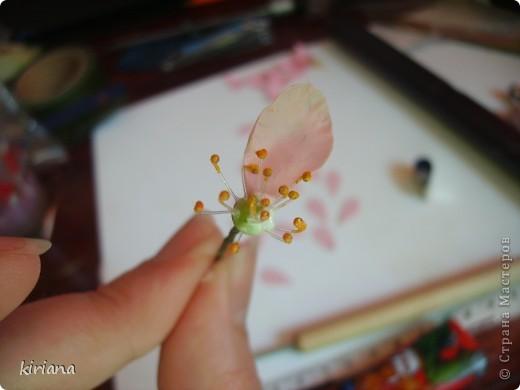 Мастер-класс, Флористика Лепка: МК сакура (часть 2:цветы ) Фарфор холодный. Фото 4