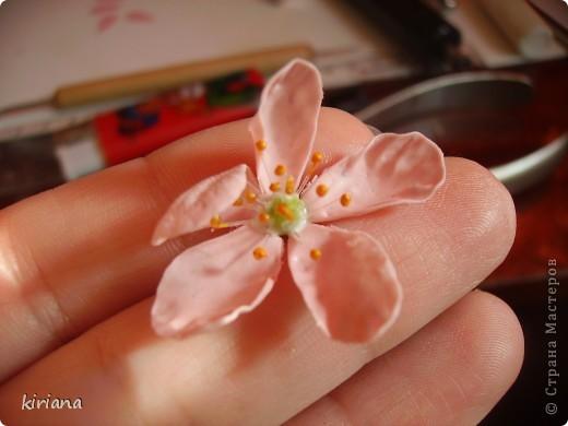 Мастер-класс, Флористика Лепка: МК сакура (часть 2:цветы ) Фарфор холодный. Фото 5