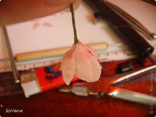 Мастер-класс, Флористика Лепка: МК сакура (часть 2:цветы ) Фарфор холодный. Фото 6