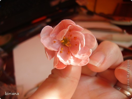 Мастер-класс, Флористика Лепка: МК сакура (часть 2:цветы ) Фарфор холодный. Фото 7