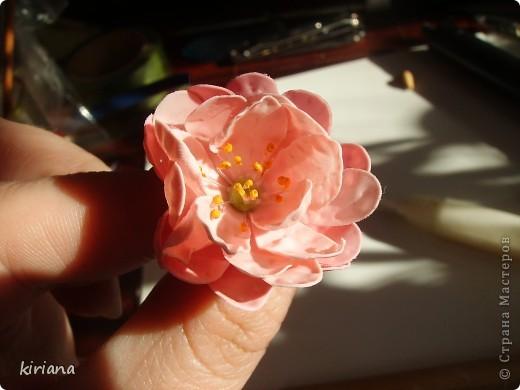 Мастер-класс, Флористика Лепка: МК сакура (часть 2:цветы ) Фарфор холодный. Фото 9