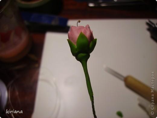 Мастер-класс, Флористика Лепка: МК сакура (часть 2:цветы ) Фарфор холодный. Фото 14
