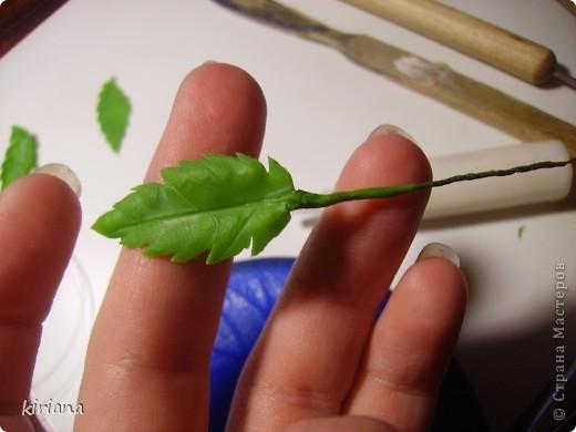 Мастер-класс, Флористика Лепка: МК сакура (часть 3: листья, тонировка, сборка) Фарфор холодный. Фото 7
