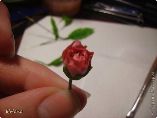 Мастер-класс, Флористика Лепка: МК сакура (часть 3: листья, тонировка, сборка) Фарфор холодный. Фото 9