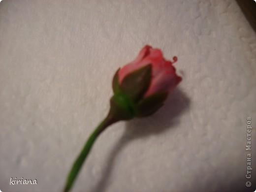 Мастер-класс, Флористика Лепка: МК сакура (часть 3: листья, тонировка, сборка) Фарфор холодный. Фото 10