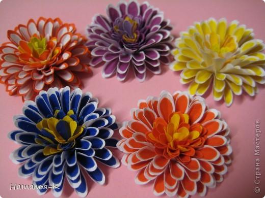 Мастер-класс Бумагопластика: цветок - георгин Бумага. Фото 1