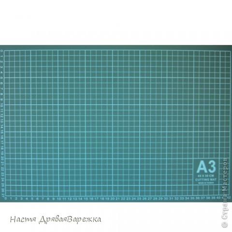 Материалы и инструменты, Скрапбукинг: ХОЧУ  СКРАПИТЬ!  С чего начать?  Часть первая. Фото 2