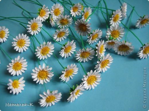 Квиллинг: Цветы - ромашки.