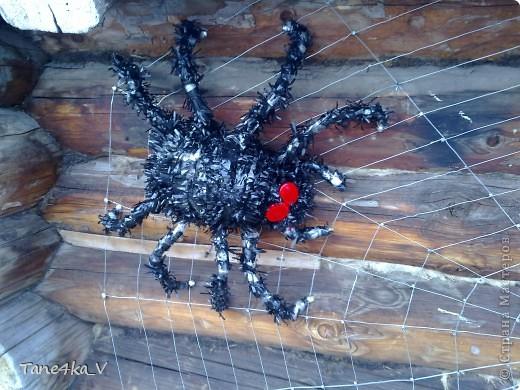 Как дела паука своими руками