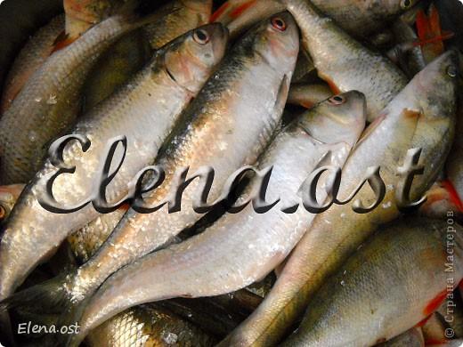 Как сделать селедку из речной рыбы