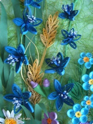 Картина, панно Бумагопластика, Квиллинг: На моём лугу цветы -для души и красоты! Бумага, Пастель День рождения. Фото 10