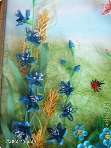 Картина, панно Бумагопластика, Квиллинг: На моём лугу цветы -для души и красоты! Бумага, Пастель День рождения. Фото 3