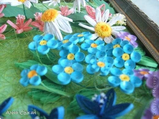 Картина, панно Бумагопластика, Квиллинг: На моём лугу цветы -для души и красоты! Бумага, Пастель День рождения. Фото 6