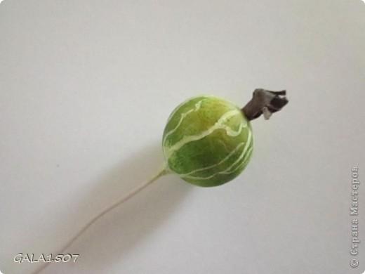 Мастер-класс Лепка: Выращиваем соленые ягодки. МК Тесто соленое. Фото 37