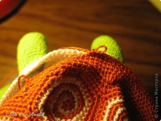 Игрушка, Мастер-класс, Поделка, изделие Вязание крючком: изготовление Черепашки. Фото 22