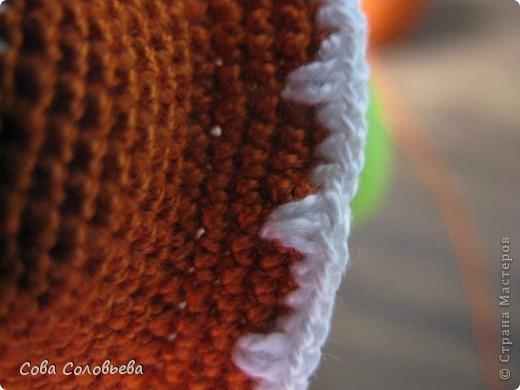 Игрушка, Мастер-класс, Поделка, изделие Вязание крючком: изготовление Черепашки. Фото 23