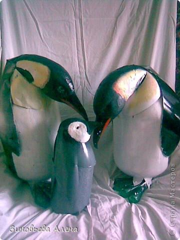 Поделка, изделие: Птицы из ПЭТ бутылок Бутылки пластиковые. Фото 6