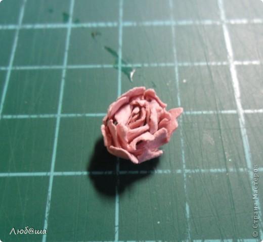 Мастер-класс Бумагопластика: Как я делаю пионы и розы. Бумага, Клей. Фото 10