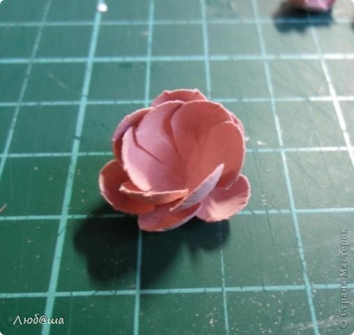 Мастер-класс Бумагопластика: Как я делаю пионы и розы. Бумага, Клей. Фото 13