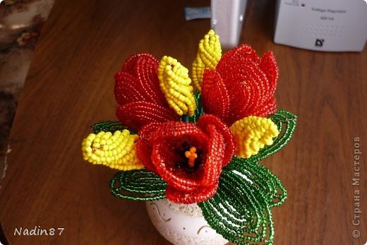 Кундус: тюльпаны из бисера мастер -класс