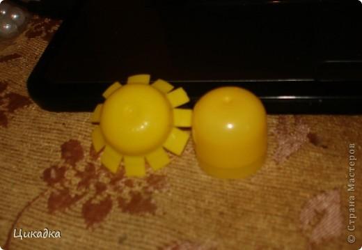 Мастер-класс, Поделка, изделие Моделирование: цветок из еловых лепестков Шишки. Фото 2