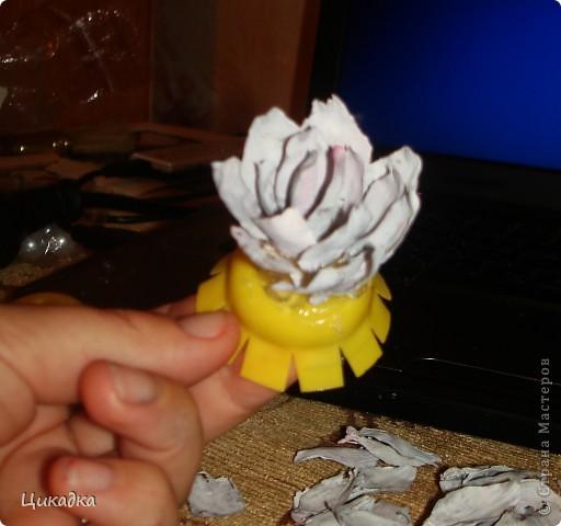 Мастер-класс, Поделка, изделие Моделирование: цветок из еловых лепестков Шишки. Фото 6