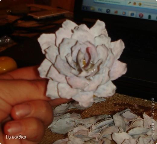 Мастер-класс, Поделка, изделие Моделирование: цветок из еловых лепестков Шишки. Фото 8