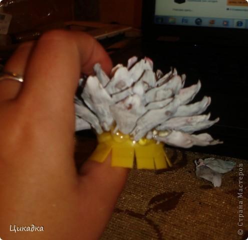 Мастер-класс, Поделка, изделие Моделирование: цветок из еловых лепестков Шишки. Фото 10