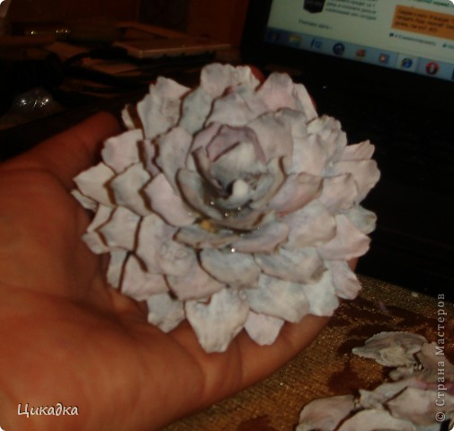 Мастер-класс, Поделка, изделие Моделирование: цветок из еловых лепестков Шишки. Фото 11