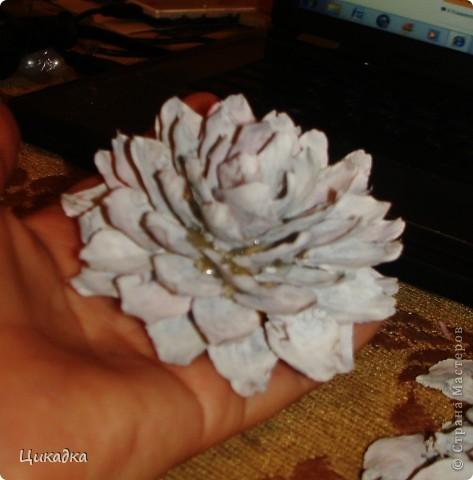 Мастер-класс, Поделка, изделие Моделирование: цветок из еловых лепестков Шишки. Фото 12