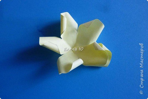 Мастер-класс Бумагопластика: Розы из бумаги на скорую руку Бумага День учителя. Фото 10