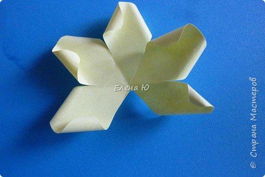 Мастер-класс Бумагопластика: Розы из бумаги на скорую руку Бумага День учителя. Фото 12