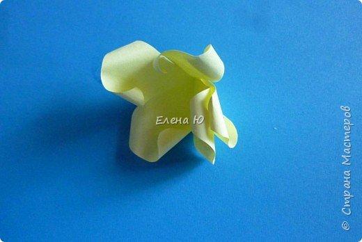Мастер-класс Бумагопластика: Розы из бумаги на скорую руку Бумага День учителя. Фото 13