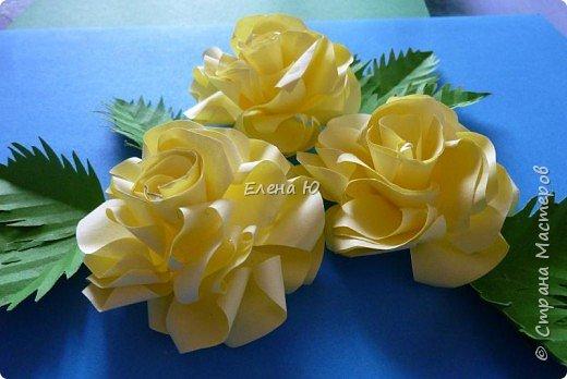 Мастер-класс Бумагопластика: Розы из бумаги на скорую руку Бумага День учителя. Фото 2