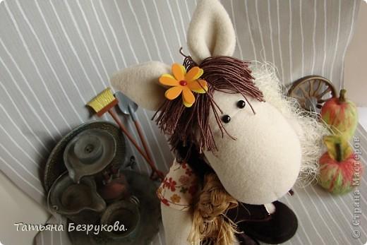 Игрушка Шитьё: Лошадка Иго-Го....В гости к Вам... Ткань Дебют. Фото 3
