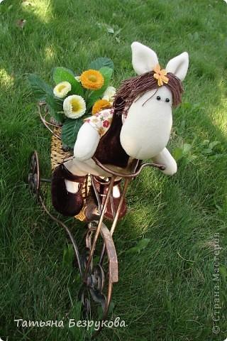 Игрушка Шитьё: Лошадка Иго-Го....В гости к Вам... Ткань Дебют. Фото 1