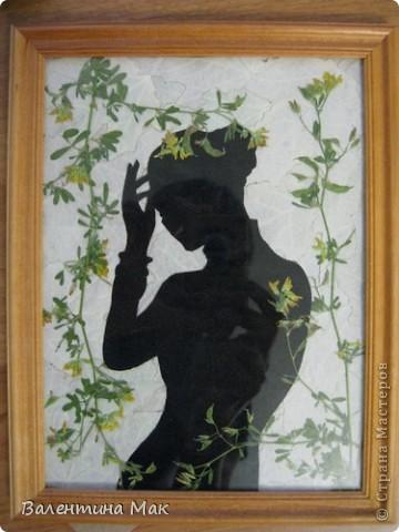 Картина, панно, рисунок, Мастер-класс Аппликация: Плоскостная флористика+силуэтное вырезание. Маленький МК. Бумага бархатная, Материал природный. Фото 1
